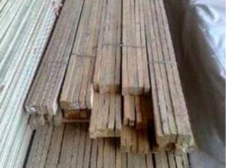 Ripa-de-Pinus-(2)
